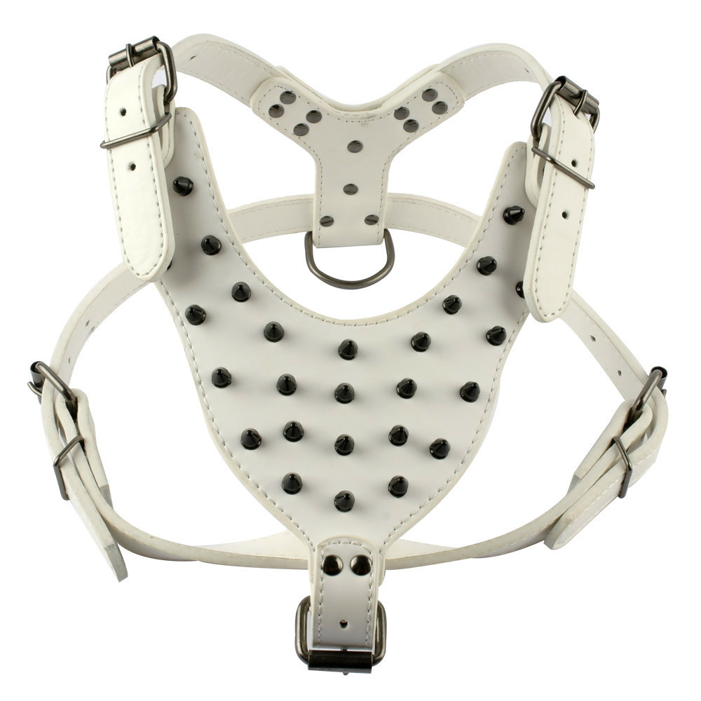 HCL-M04WH harness 01