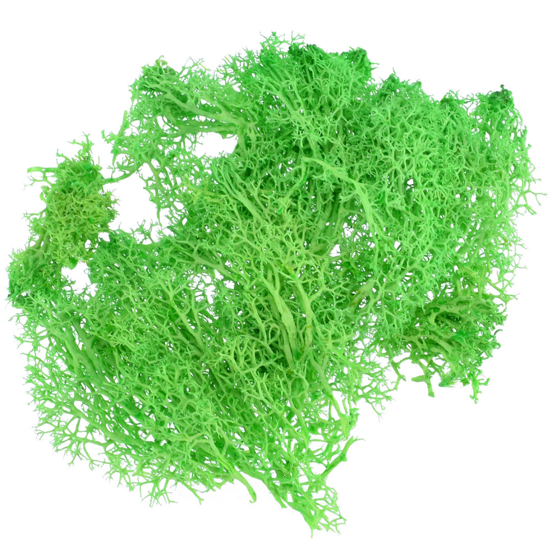 1pcs 10g Colorful Artificial Moss Plant DIY Dried Reindeer Moss Artificial Craft Flowers for Plant Pot Garden Home Wedding Decor
