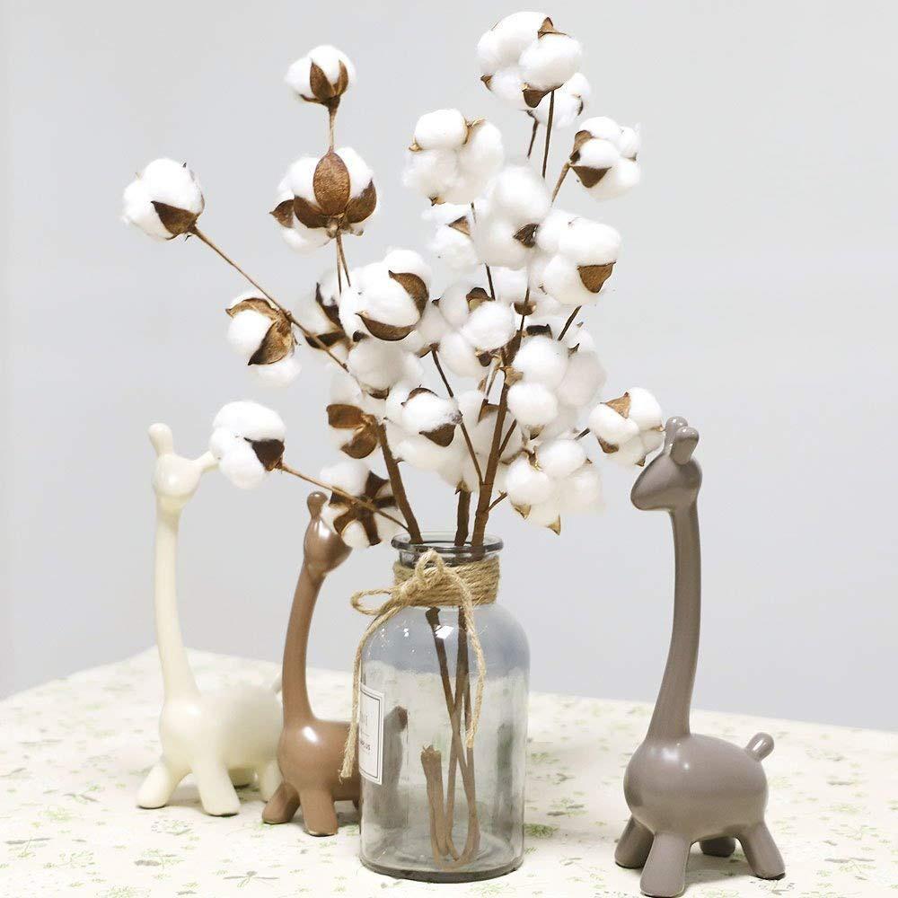 Lot de 3 tiges en coton naturel s/éch/ées Kapok en forme de fleurs s/éch/ées en coton pour f/ête de mariage ou maison