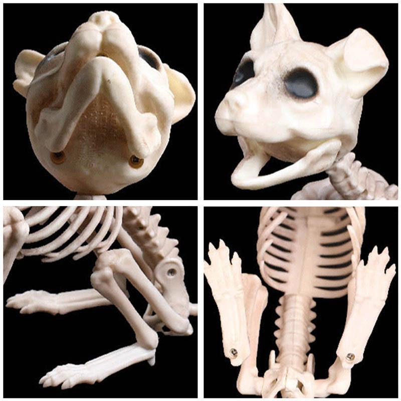 Halloween Decoration Props Animals Skeleton Mouse Dog Cat Skull Bone Ornaments Hallowmas Horror Haunted House Party Decoration (7)