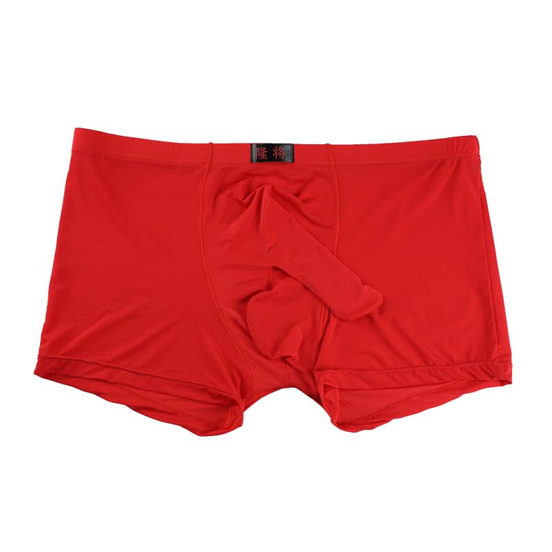 Underwear Men U Pouch Sexy Underpants Cueca Mesh Nylon Pants Trunks Boxer Shorts Gay Male Panties Hot C19040401