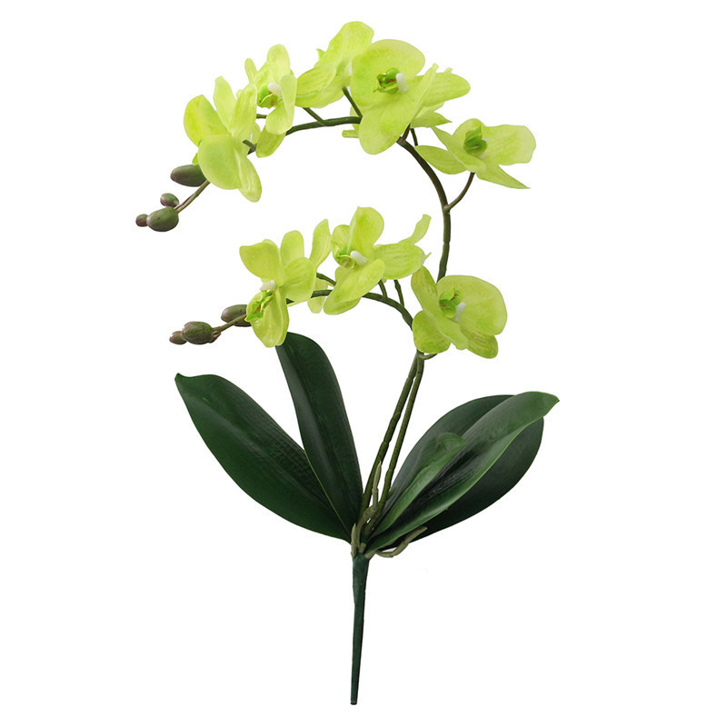 JAROWN Artificial Flower Real Touch 2 Branch Orchid Flowers with Leaves Latex Wedding Decoration Flores (1)