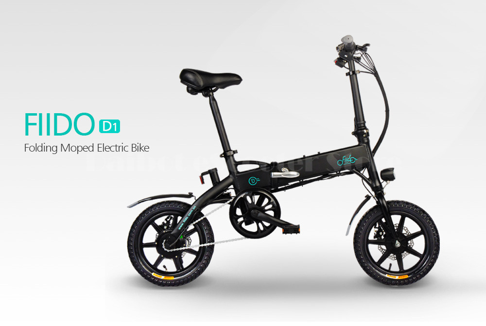 Fiido D1 Foldable Electric Scooter 2 Wheel Electric Bicycle 24V 250W Dual Brake System Portable Mini Folding Electric Bikes (3)