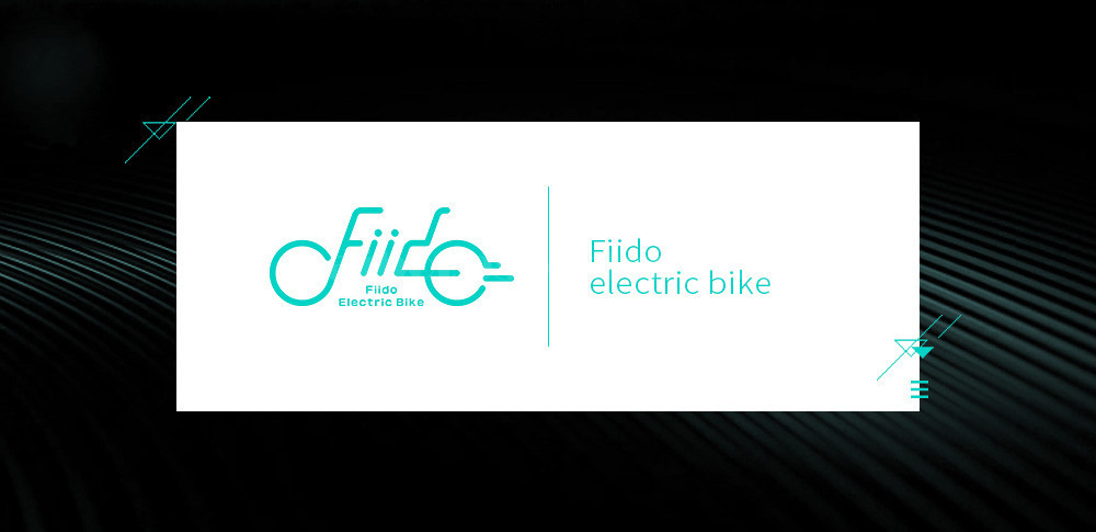 Fiido D1 Foldable Electric Scooter 2 Wheel Electric Bicycle 24V 250W Dual Brake System Portable Mini Folding Electric Bikes (2)