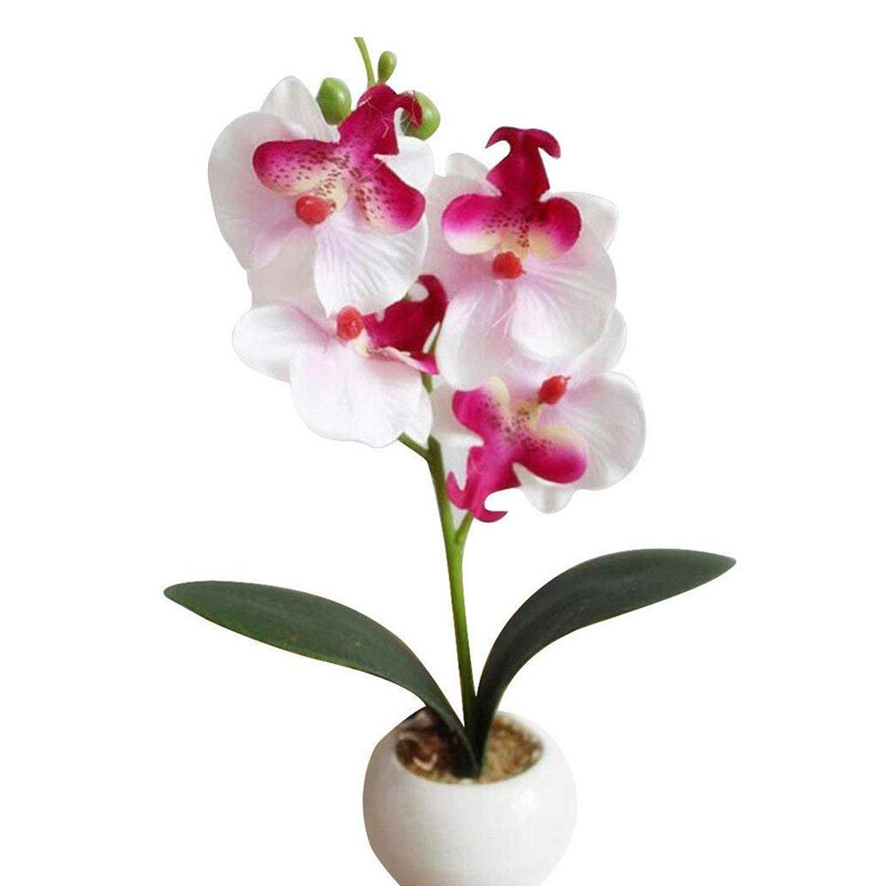 Gros Pot Fleur Plastique plantes artificielles phalaenopsis pot plantes en plastique pot de  simulation de fleurs pour la décoration de la maison ornement blanc coloré