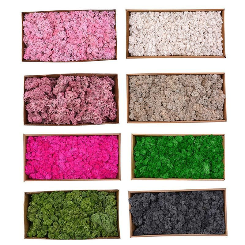500g/box Beautiful Moss Plant Flowers Long Lasting Preserved Dried Craft Flower Diy Home Wedding Party Decor 2018 Hogard Ma3018 J190707