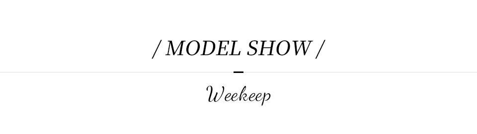 MODEL SHOW,