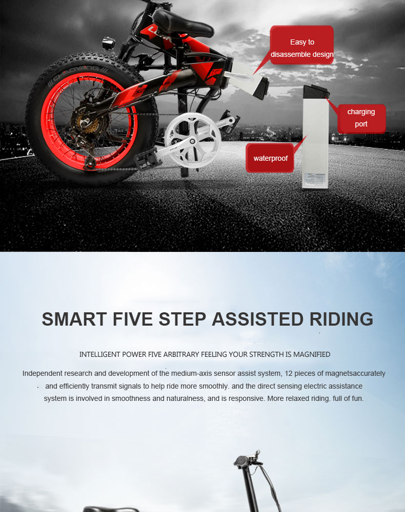 Daibot Electric Scooter Adults Two Wheels Electric Bicycle 20 Inch Big Tire 500W Electric E Bike Scooter With Double Brake (8)