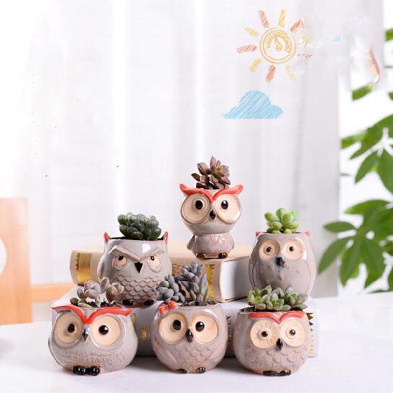 6 Pcs-set Mini Owl Flowerpot Plant Flower Pot Home Office Decor Planter Succulent Cactus Bonsai Plant Holder Garden decoration (3)