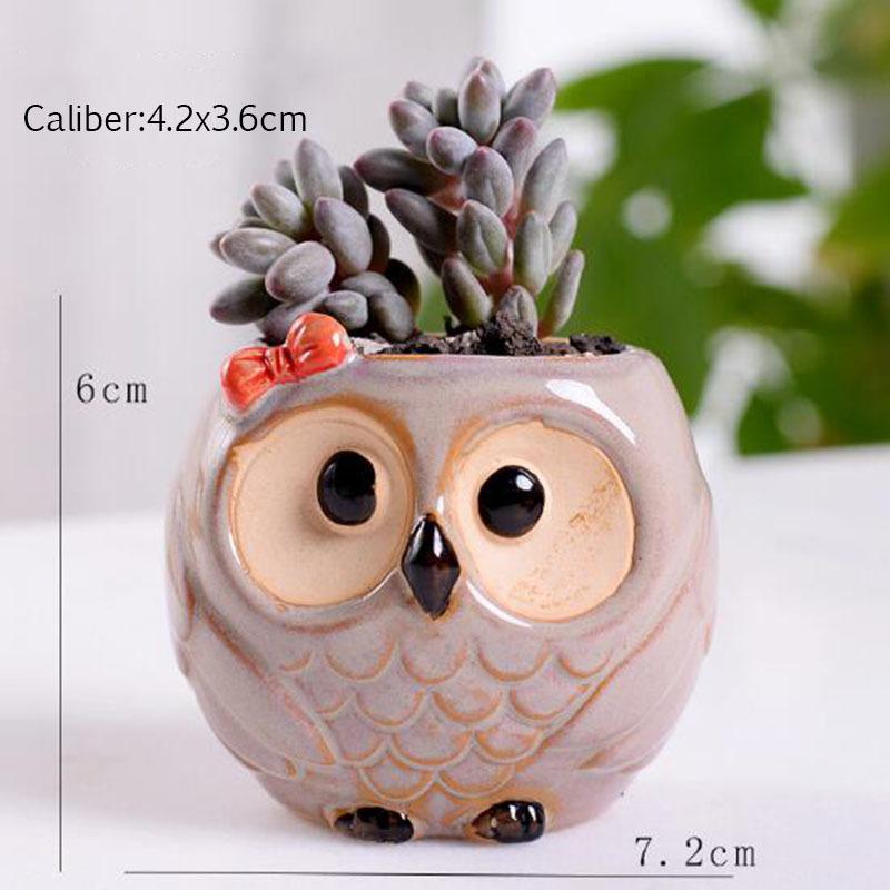 6 Pcs-set Mini Owl Flowerpot Plant Flower Pot Home Office Decor Planter Succulent Cactus Bonsai Plant Holder Garden decoration (6)