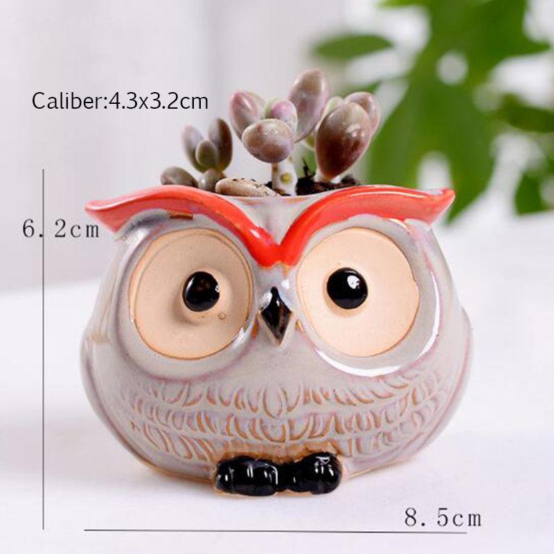 6 Pcs-set Mini Owl Flowerpot Plant Flower Pot Home Office Decor Planter Succulent Cactus Bonsai Plant Holder Garden decoration (5)