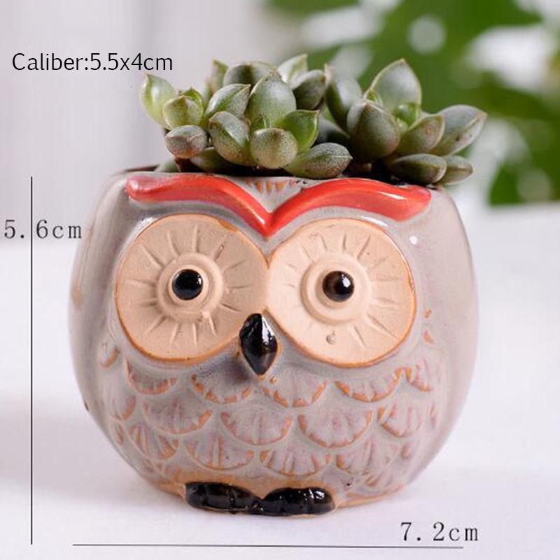 6 Pcs-set Mini Owl Flowerpot Plant Flower Pot Home Office Decor Planter Succulent Cactus Bonsai Plant Holder Garden decoration (10)