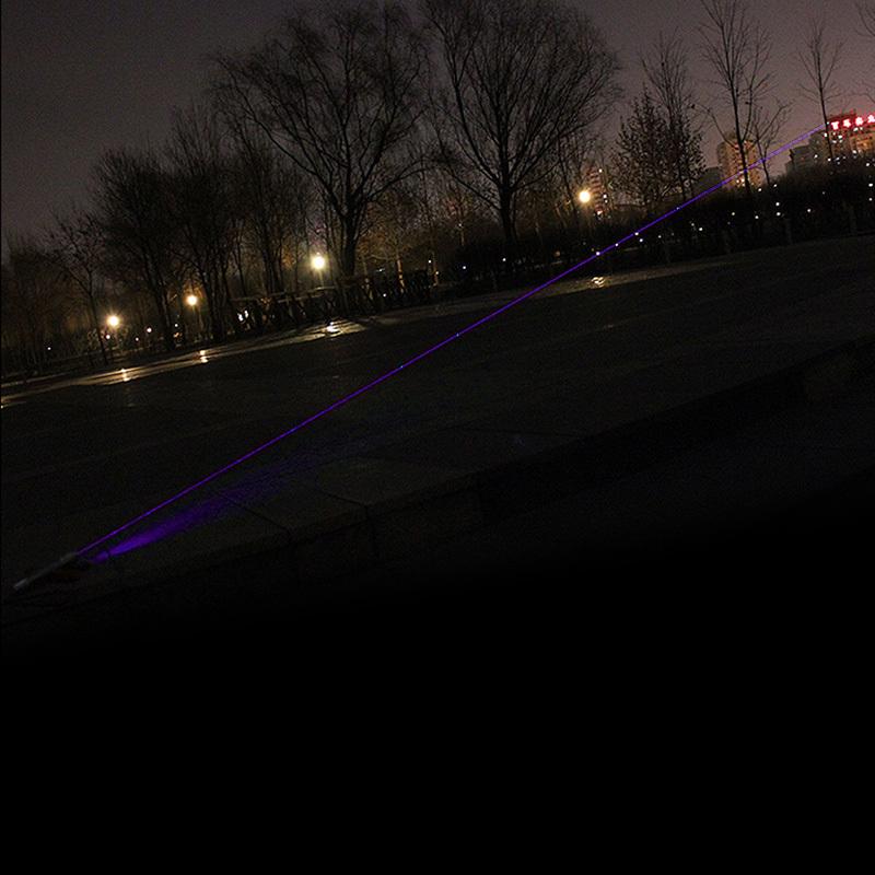 301-Violet-9