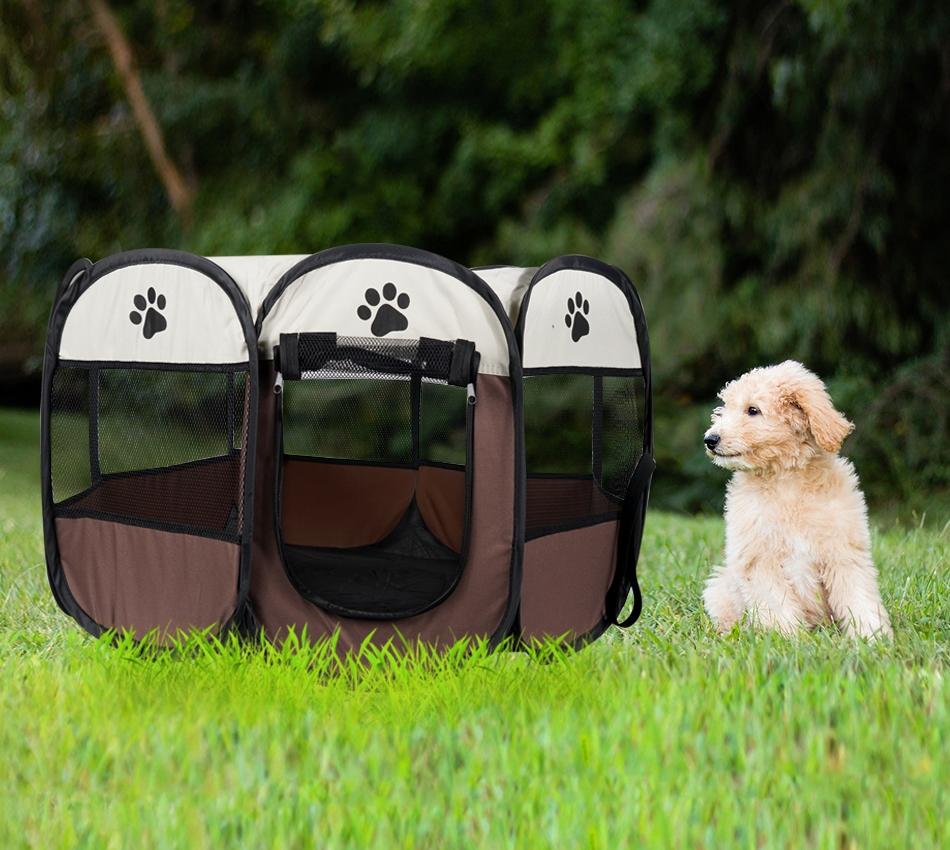 park for dog