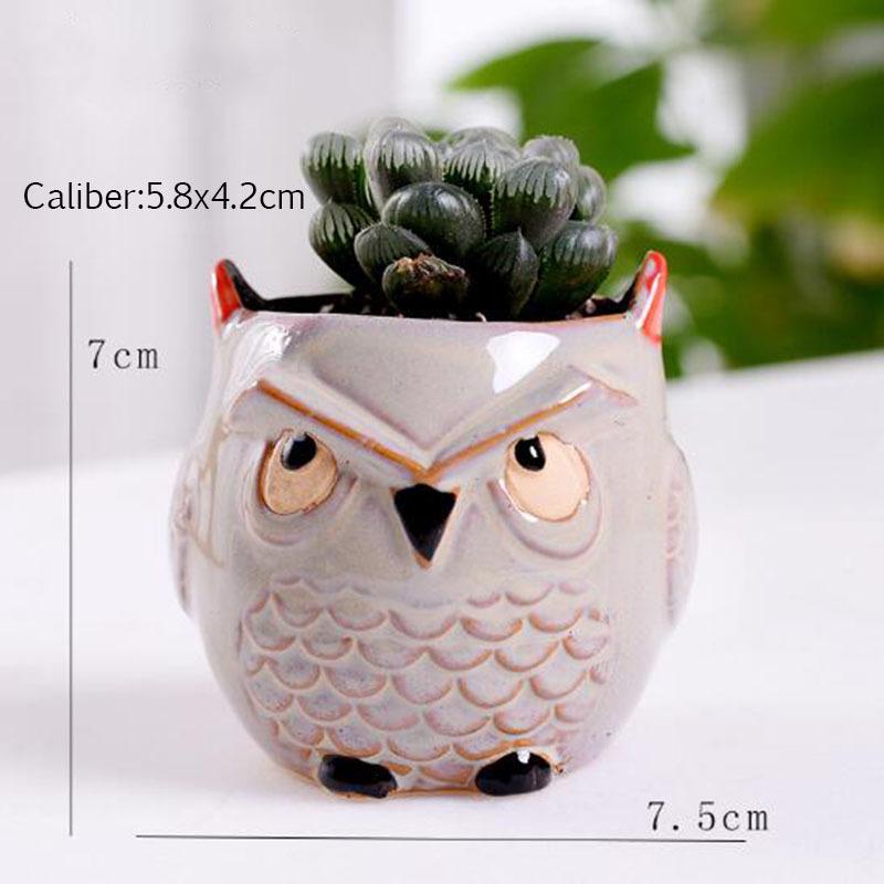 6 Pcs-set Mini Owl Flowerpot Plant Flower Pot Home Office Decor Planter Succulent Cactus Bonsai Plant Holder Garden decoration (7)