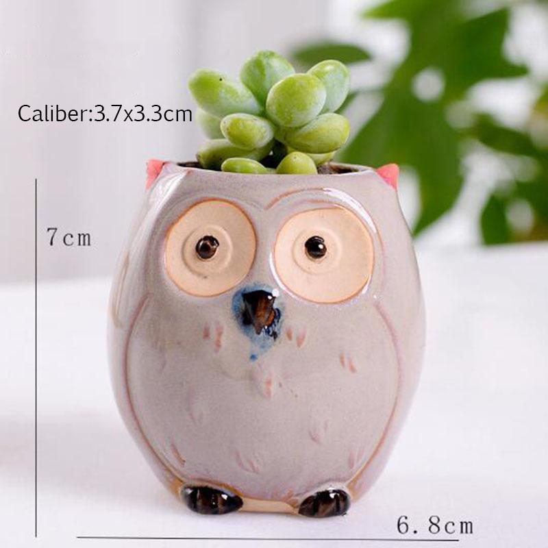 6 Pcs-set Mini Owl Flowerpot Plant Flower Pot Home Office Decor Planter Succulent Cactus Bonsai Plant Holder Garden decoration (8)