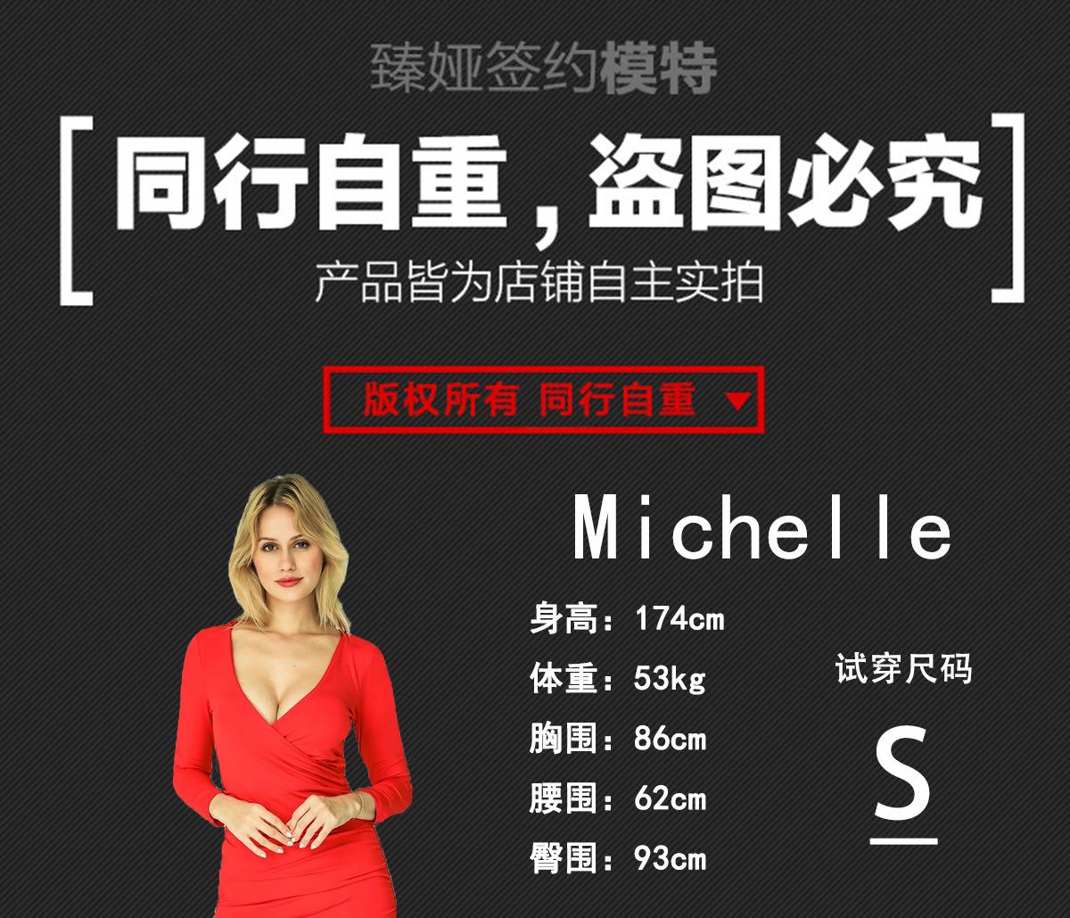 Model Card-Michelle-CrossS