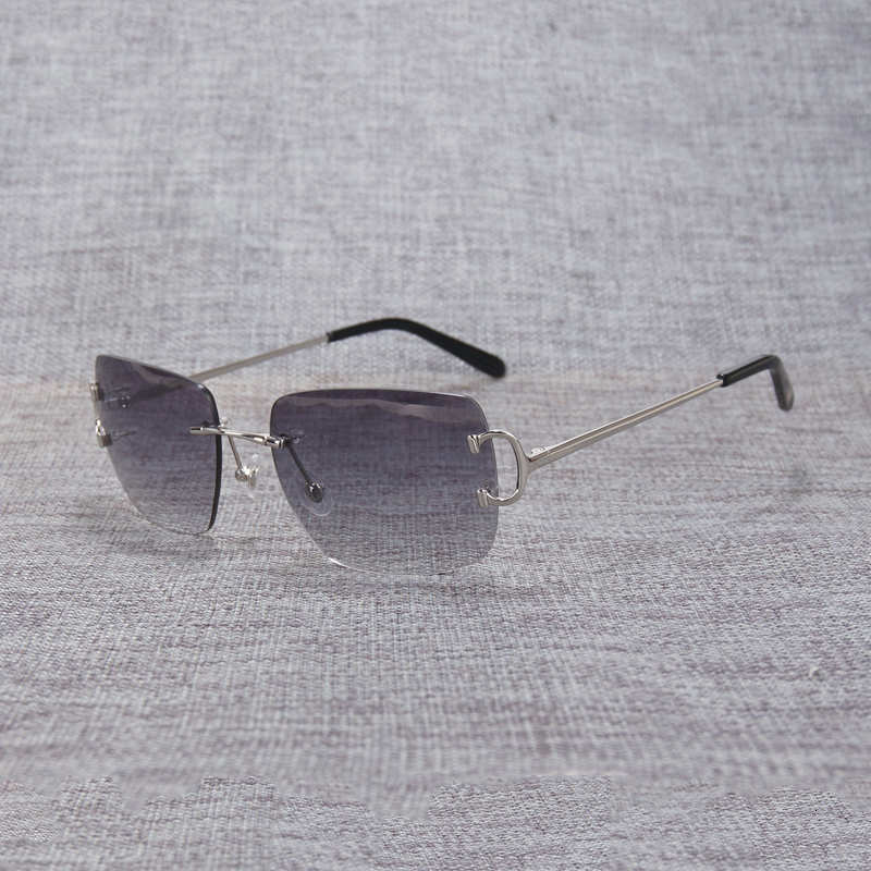 rimless sunglasses (1)