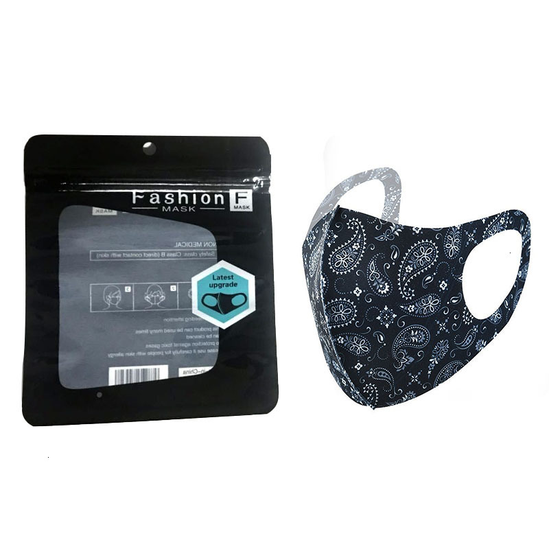 Cashew Printing Washable Face Mask Individual Black Package Anti Dust PM2.5 Dustproof Anti-bacterial Reusable Silk Ice Printed Masks
