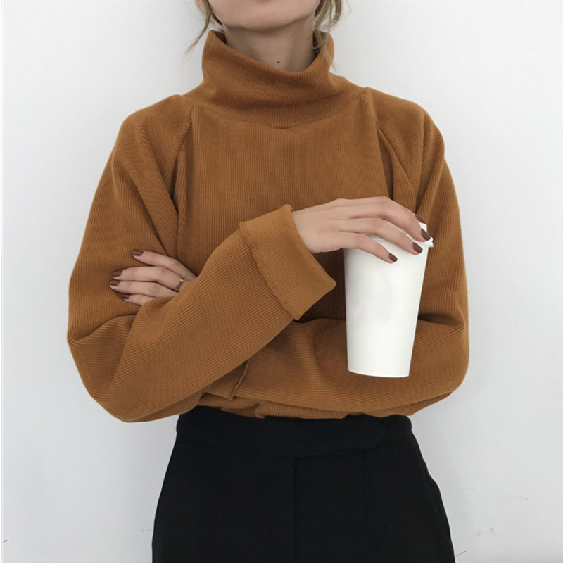 Ccibuy11-Turtleneck-Knitted-Jumpers-for-women-Women-Sweater-Casual-Loose-Long-Batwing-Sleeve-Crocheted-Pullovers-Streetwear (3)