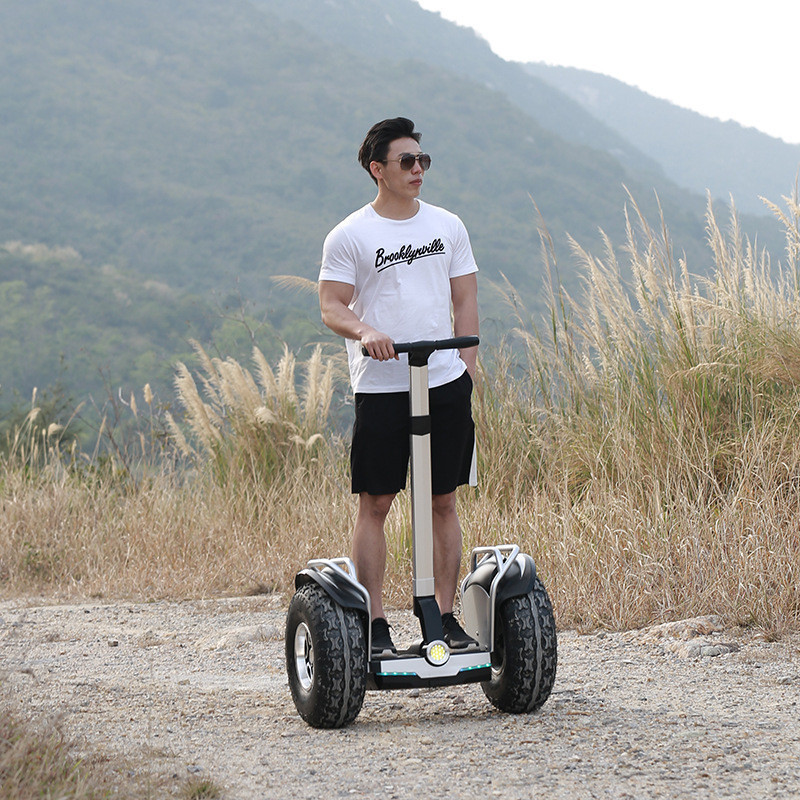 Daibot Off Road Electric Scooter Self Balancing Scooters Double System 1200W2 Adults Skateboard Hoverboard With BluetoothAPP (1)