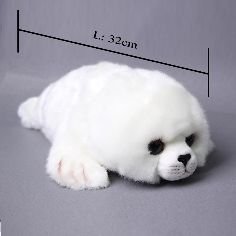 sealsL Size_011