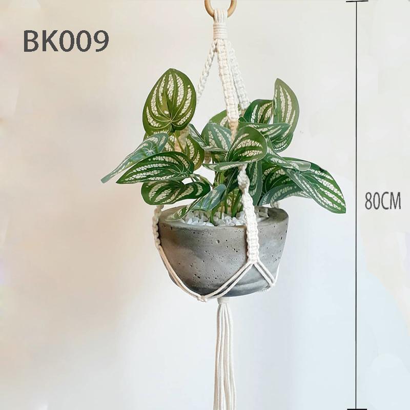BK009