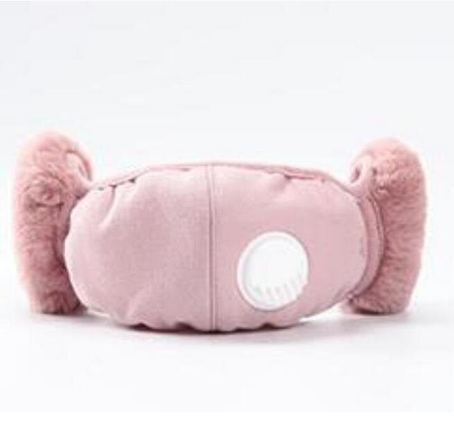 Fashion 2 In 1 Face Mask Cover With Plush Ear Protective Mask PM2.5 Thick And Warm Mouth Masks Winter Mouth-Muffle Earflap Outdoor FY9222