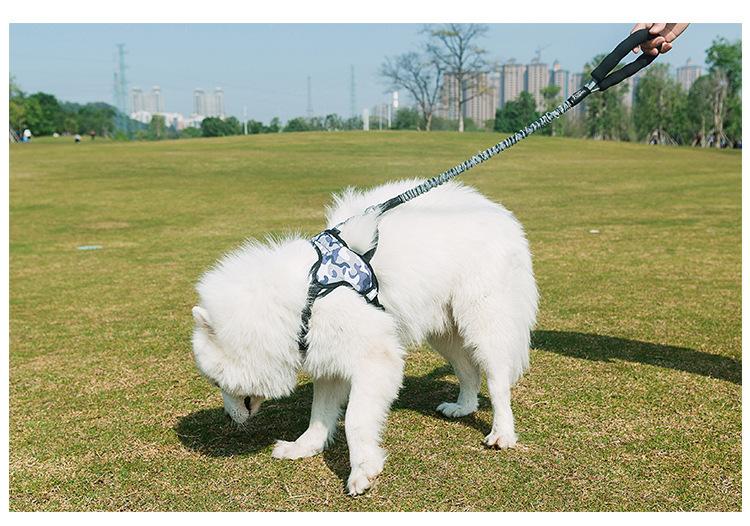 MySudui Retractable Dog Leash Nylon Rope Running Bungee Extendable Dog Leads Pet Leashe For Dog Strap Pitbull Greyhound Dropship (1)