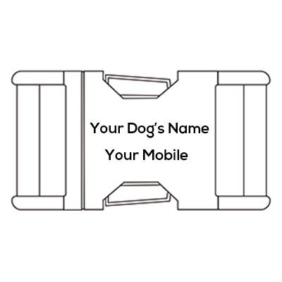 engrave dog collar