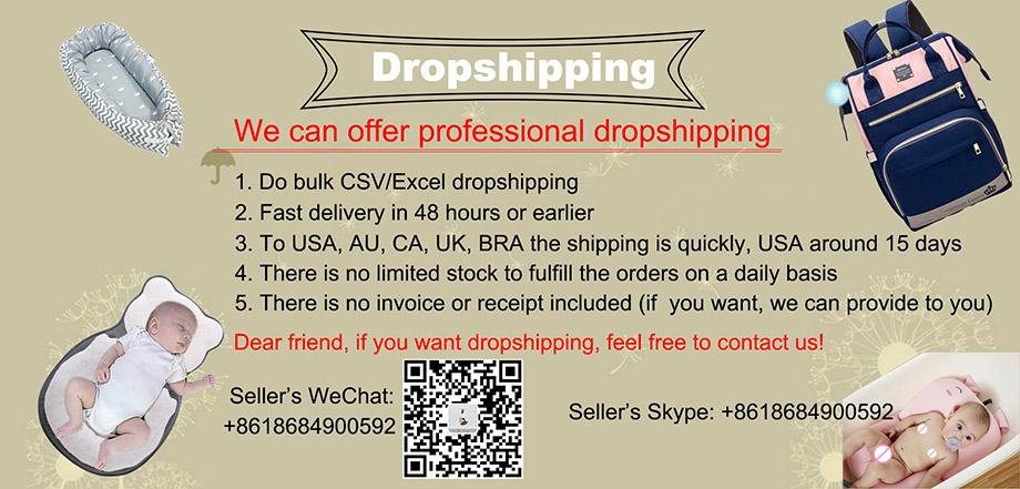 Dropshipping Copy