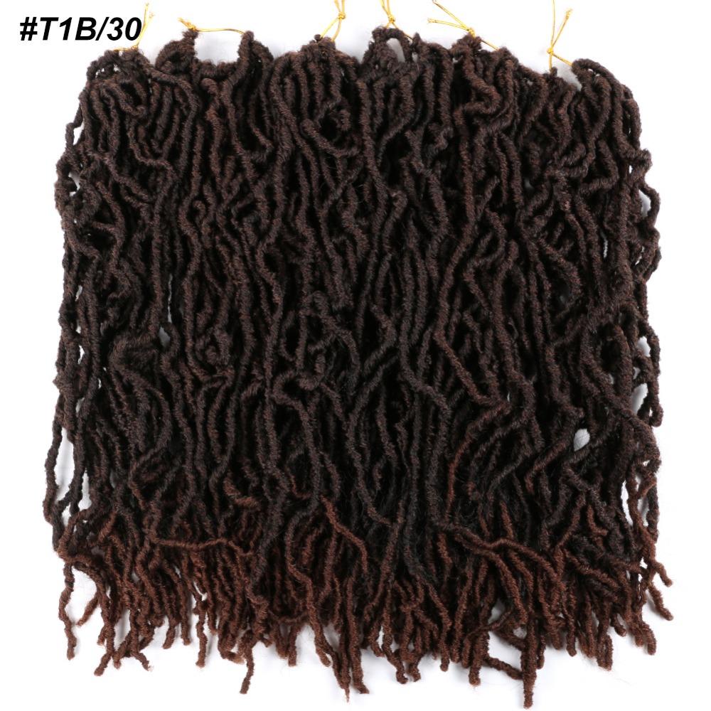 t1b30.1