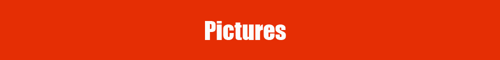 item pictures(GDN)