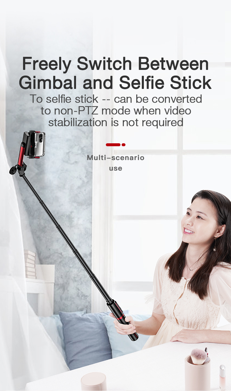 gimbal stabilizer and (14)