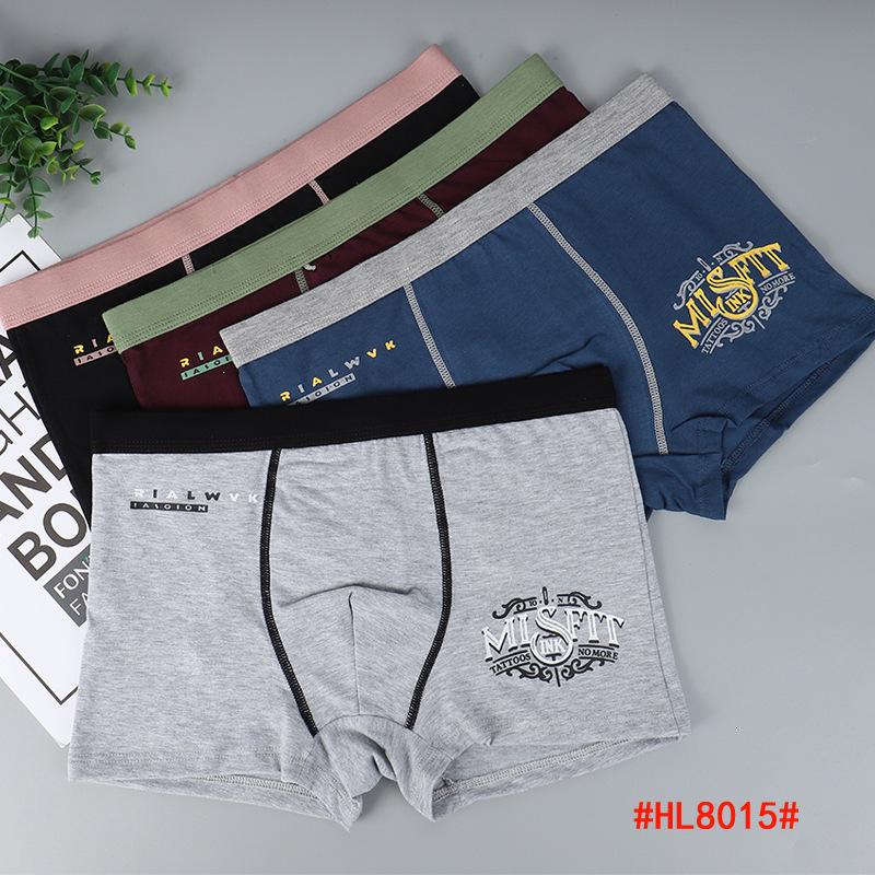 HL8015-209