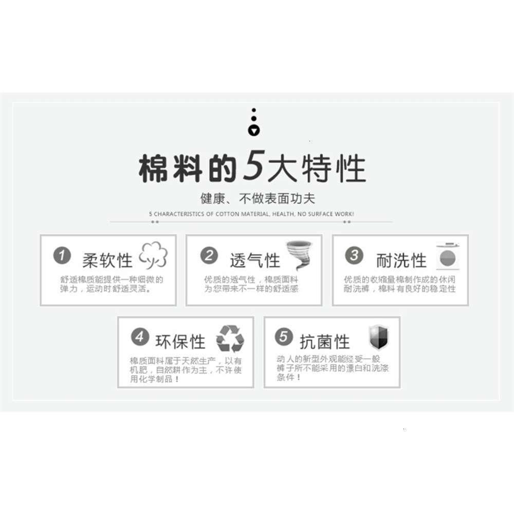8801_05.jpg