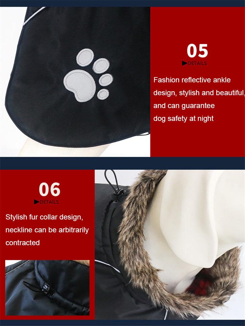 dog clothes (9)