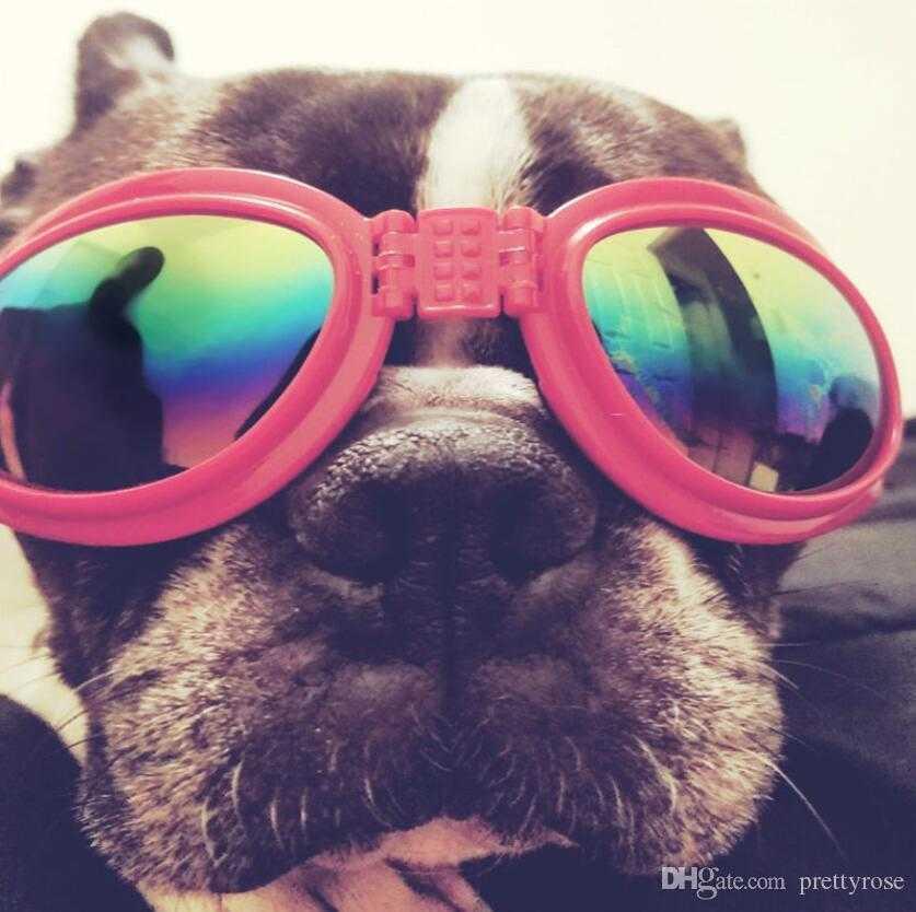 Foldable Pet Dog glasses medium Large Dog pet glasses Pet eyewear waterproof Dog Protection Goggles UV Sunglasses