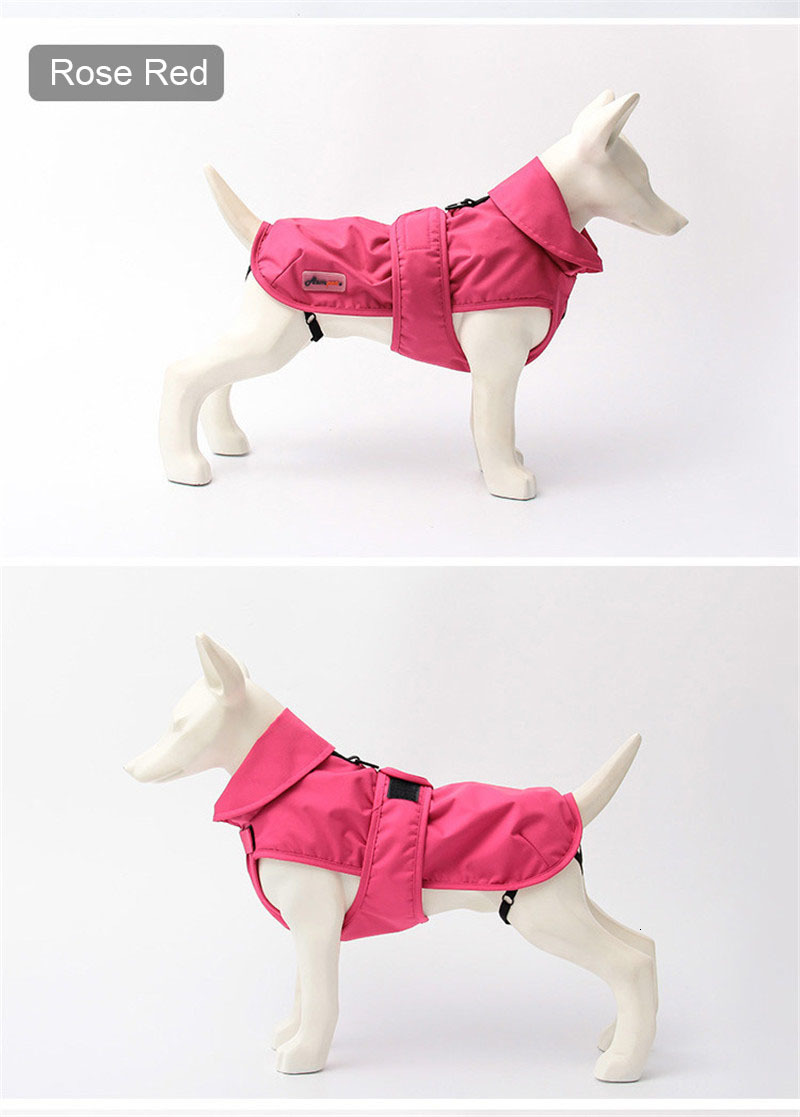 small dog clothes winter (11)