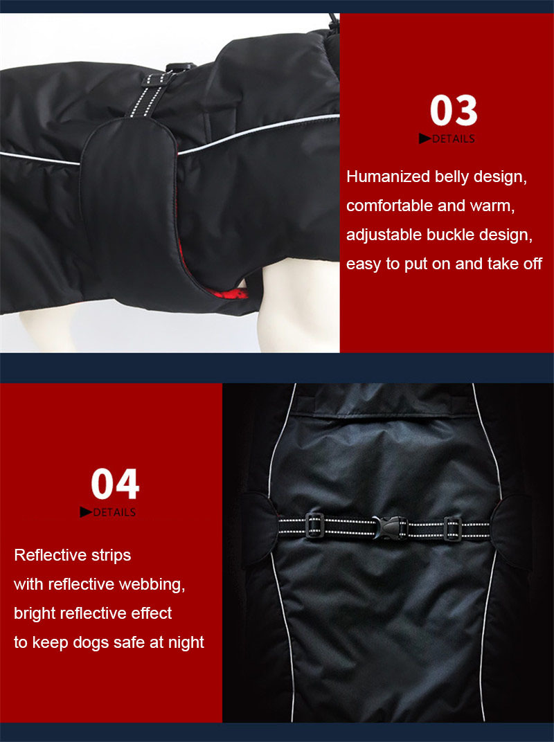 dog clothes (11)
