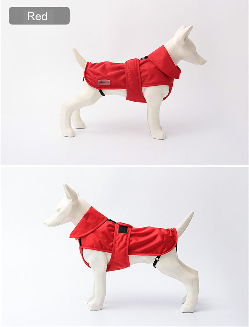 small dog clothes winter (12)