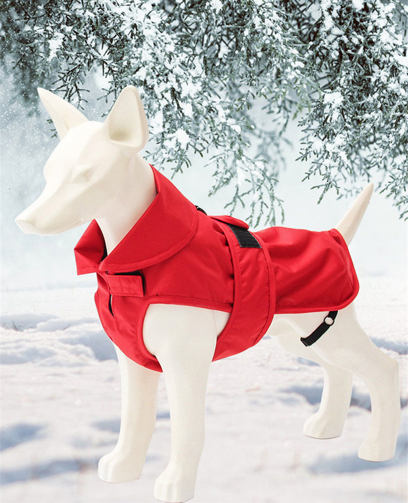 small dog clothes winter (14)