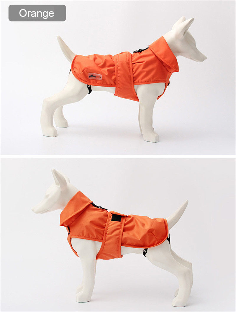 small dog clothes winter (13)