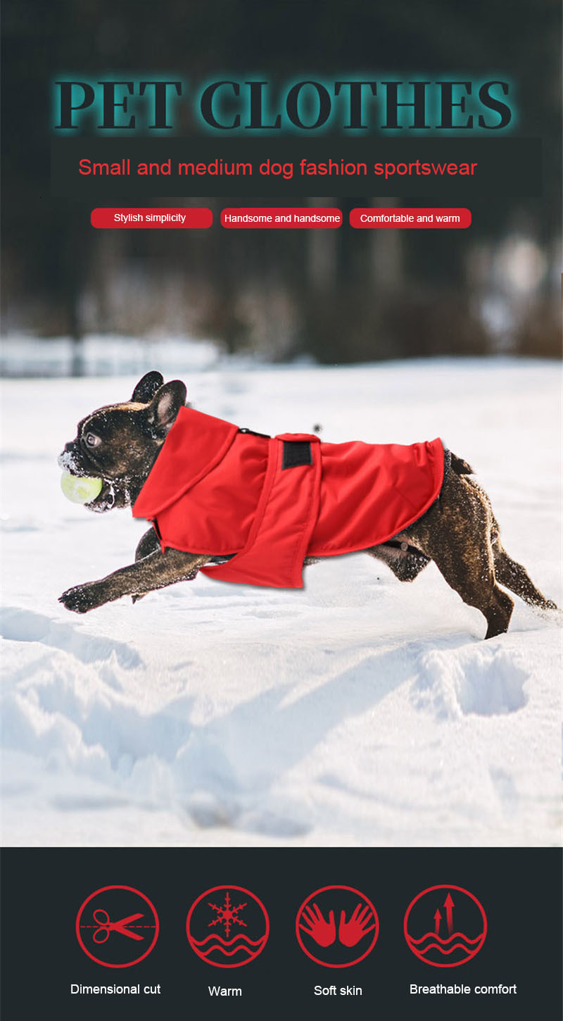 small dog clothes winter (19)