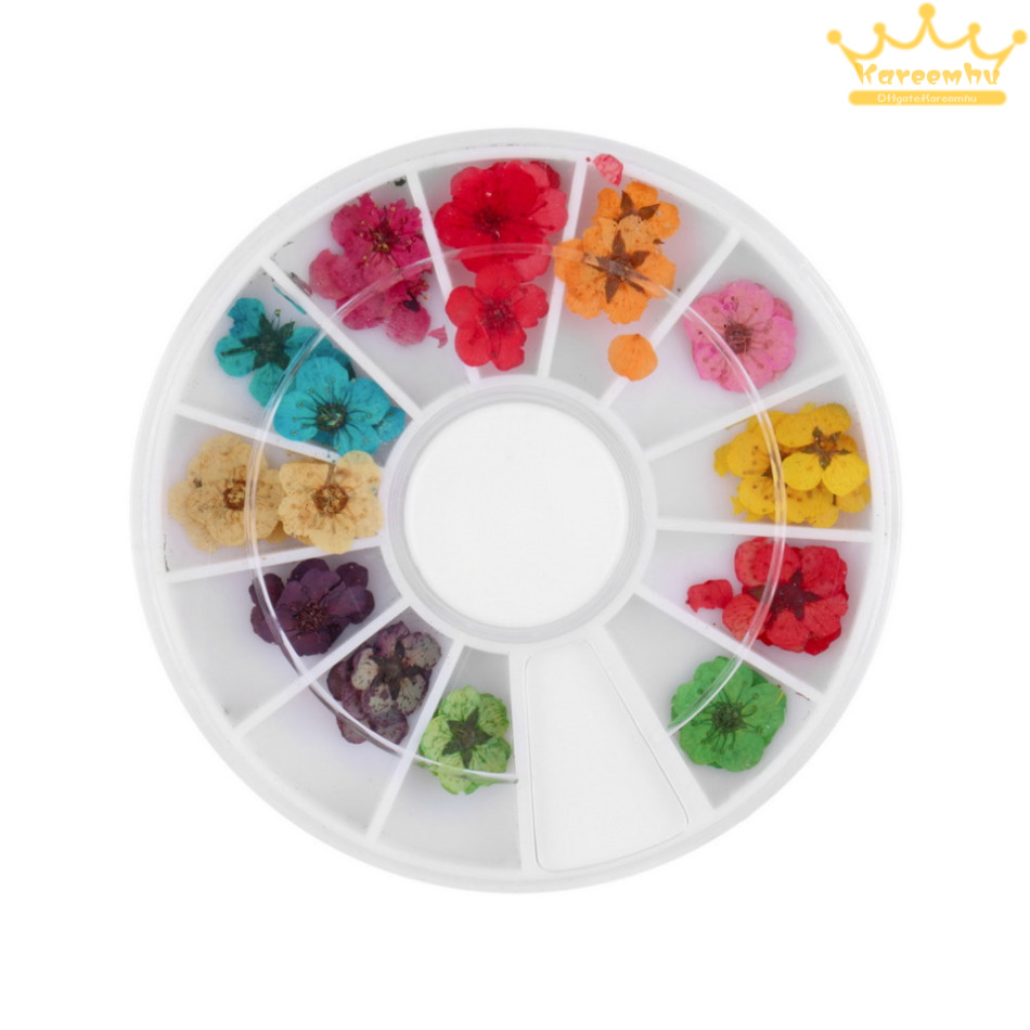 12 Color 3d flower nail art Dried Dry Flower Nail Art Wheel ...