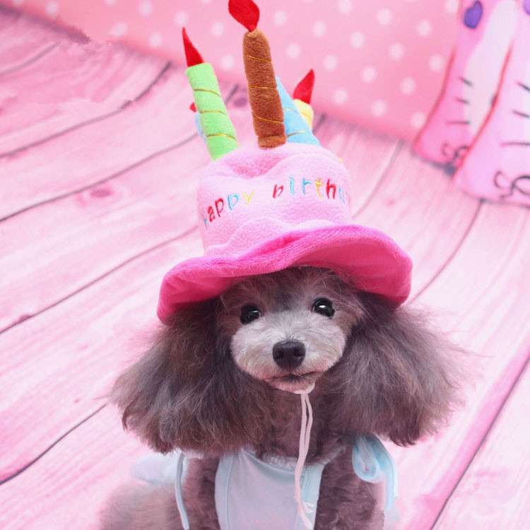Wholesale 2016 New Lovely Cute Small Dog Puppy Cap Fashion