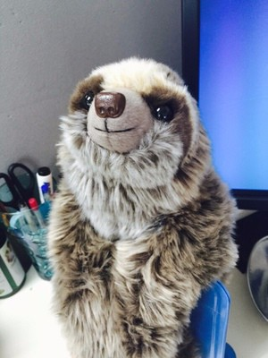 sloth (2)