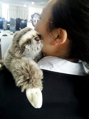 sloth (3)