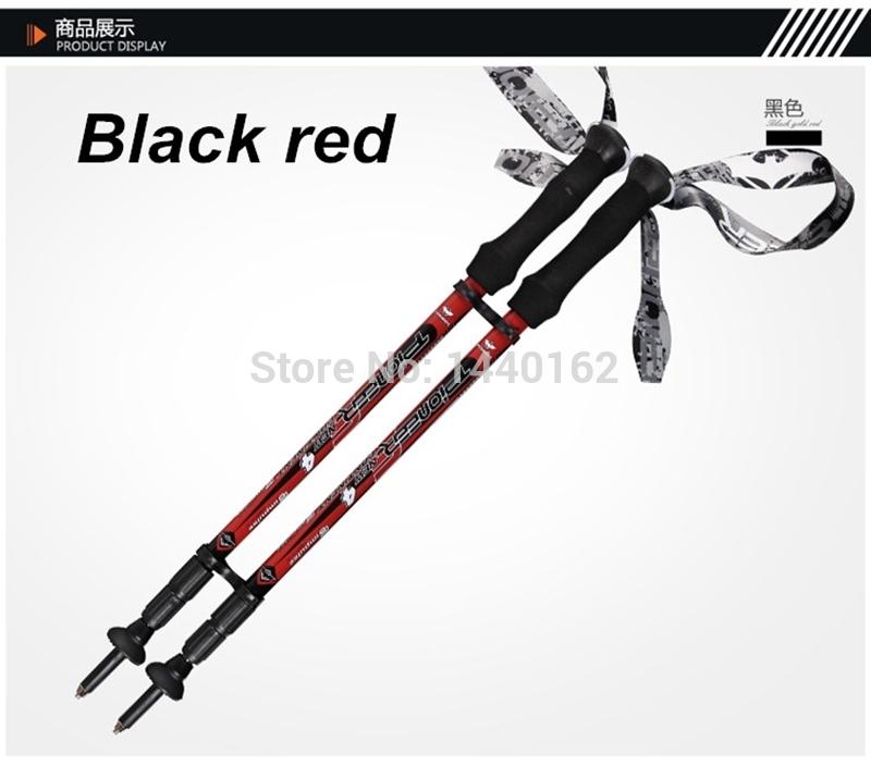 tp028 03Nordic walking sticks hiking sticks alpenstock walking cane Trekking poles mountain climbing sticks hiking pole.jpg