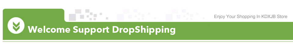 LDY-Drop Shipping